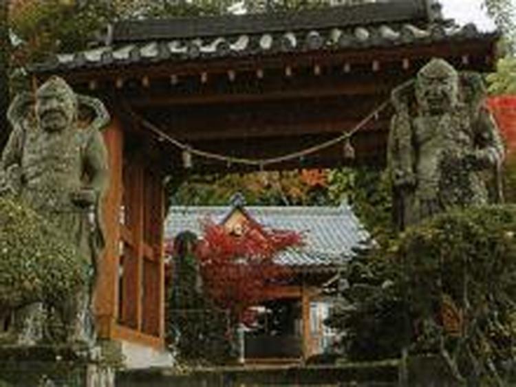 http://visit-oita.jp/files/cimage/CCCxjax800x800x0xSpot_6069_image.jpg
